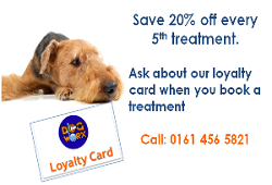 loyalty card2d